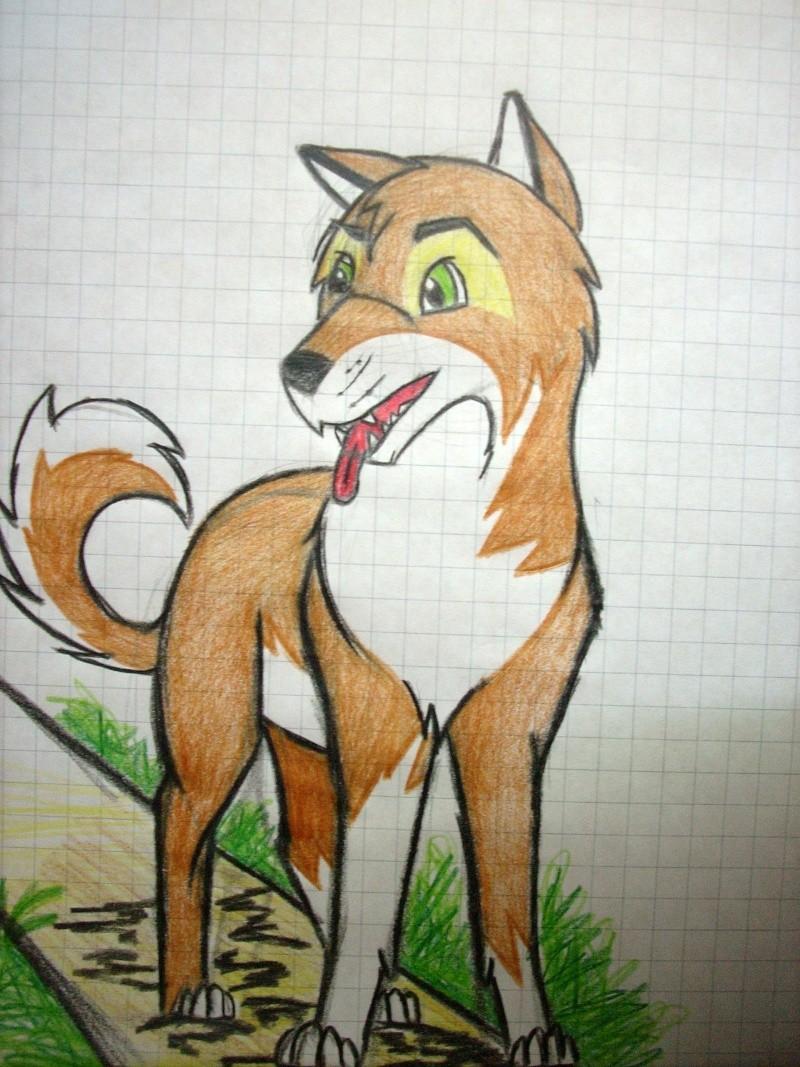 Crush (My first caricature fox) Dscn0814