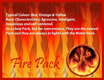Descriptions + Sig Banners Fuego10