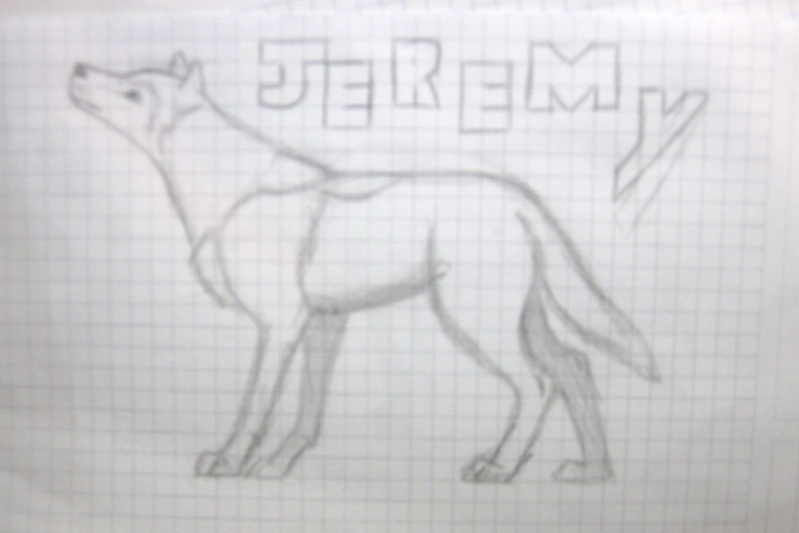 Wolf Sketches Img_0214