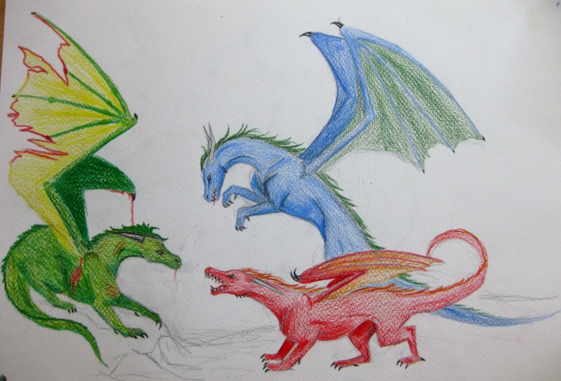 Dragon Fight Img_0714