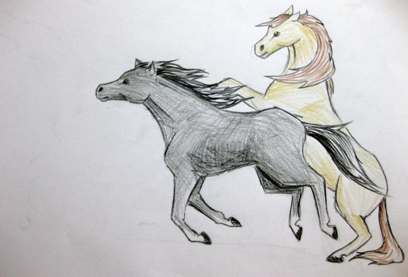 2 Horses Img_0717