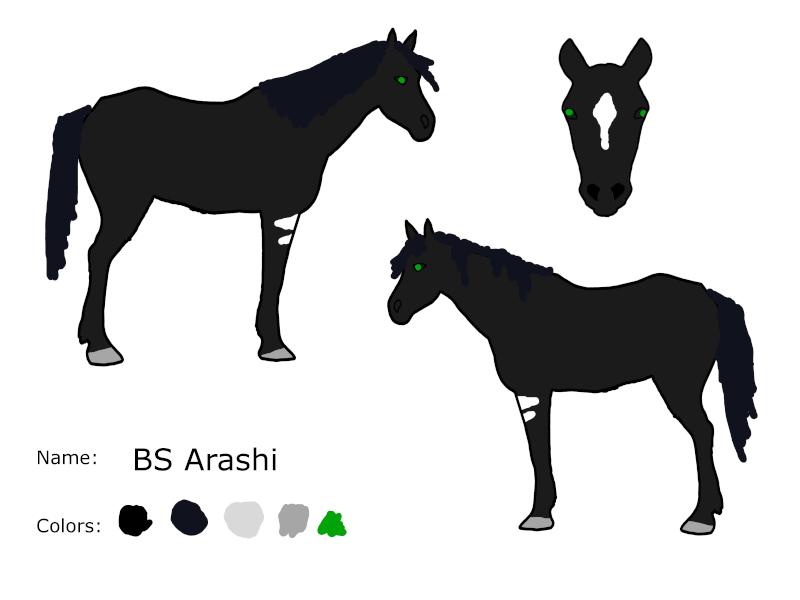 BS Arashi Linear10