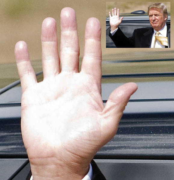 Donald Trump: into the hands of the new US president! Donald11