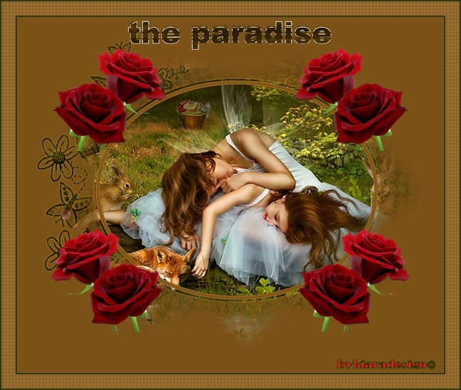 tag paradise Image218