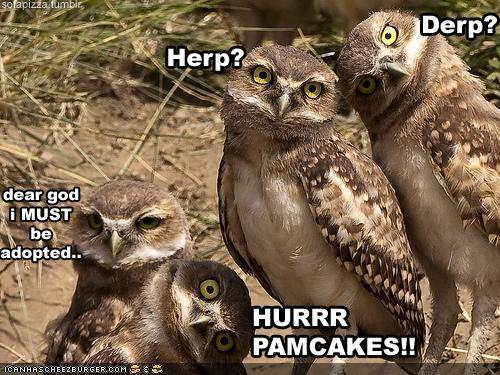 Funnyyy pics? - Page 2 Captio10