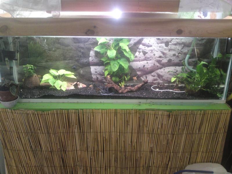 ma fishroom P27-0912