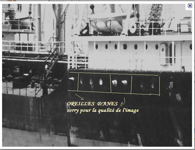 ALGERINE (I) : les années 50's, les Algerine Anglaises Oreill10