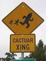 Cactuar love.. Images10