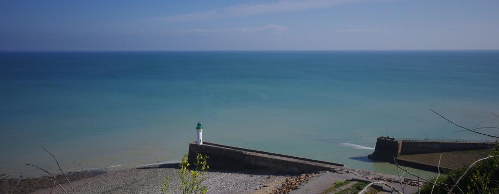 Sortie en Normandie avec des falaises, la mer, les vaches .... - Page 16 Imgp9210