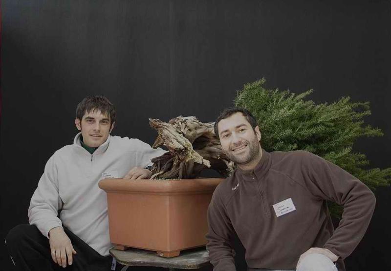 Next bonsai demo at my friend Stemberger 110