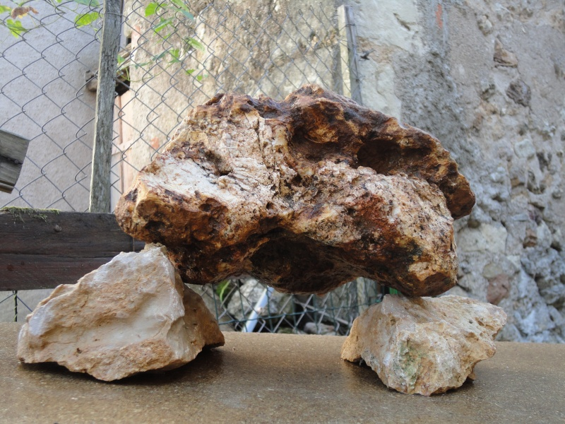 pierre naturel dans le terra Dsc00411