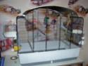 nouvelle cage Dscn1826