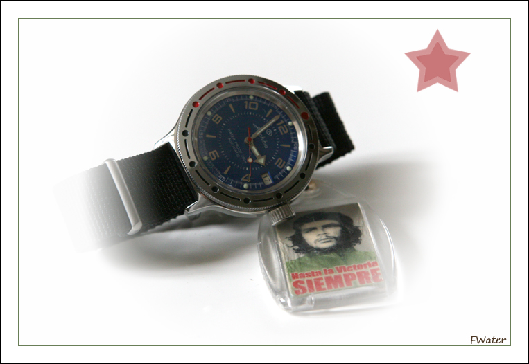 Feu de vos Vostok Amphibia Img_3712