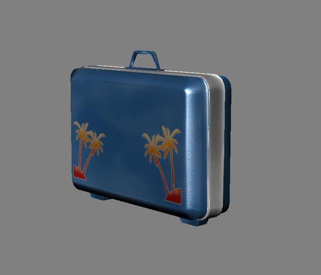 Baggage model. 211
