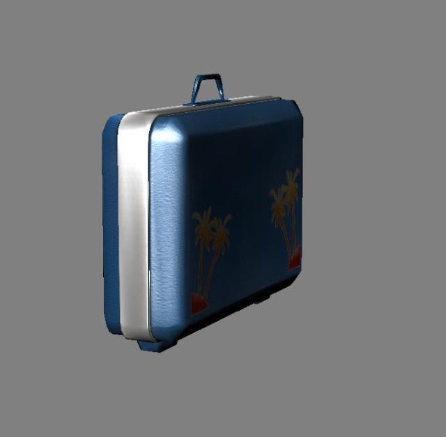 Baggage model. 311