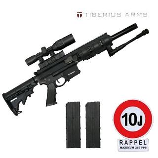 tiberius t4 1107ti10