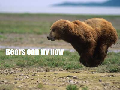 Uhm, I was bored. :< Bear-a10