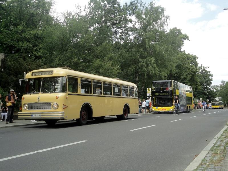 Bilder aus Berlin und Umgebung - Seite 2 Dsc02218