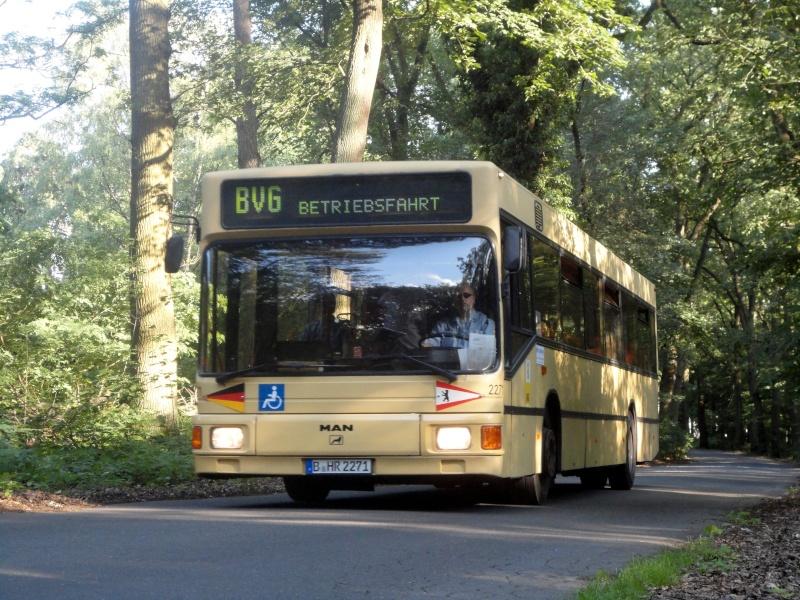 Bilder aus Berlin und Umgebung - Seite 2 Dsc02238