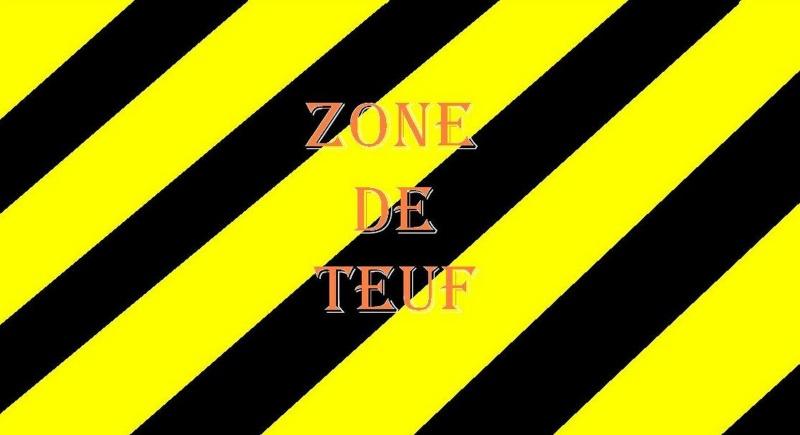 nouveau logo Zdf10