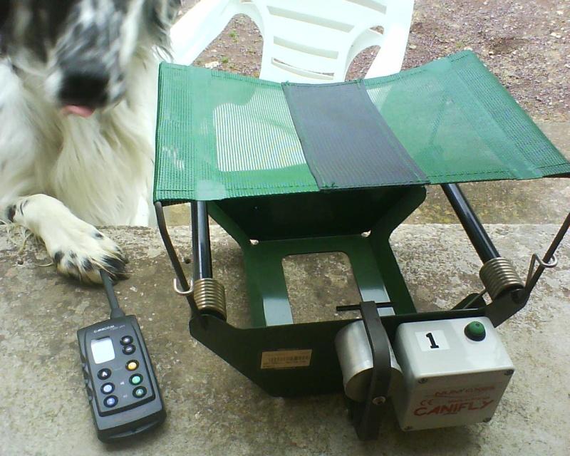 dressage de votre chiens d'arrêt  - Page 4 Dsc00210