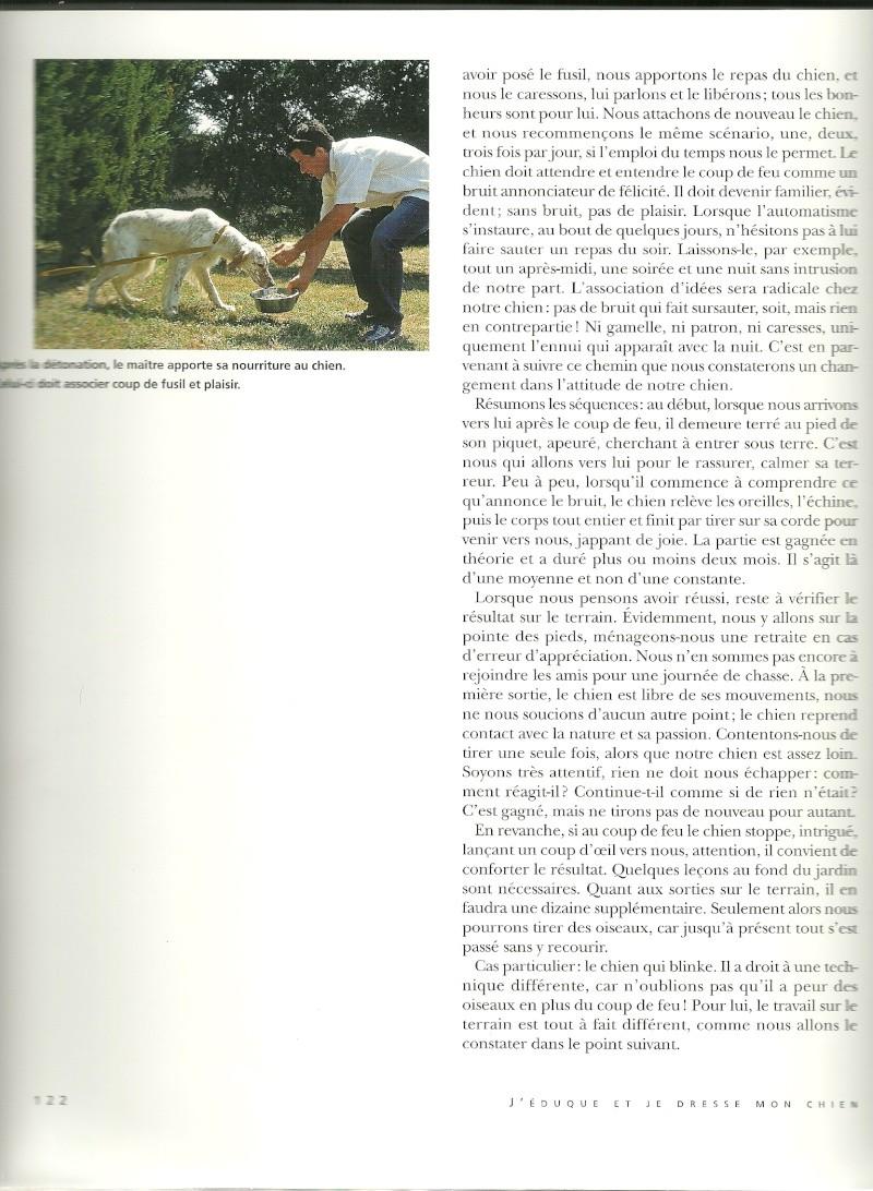 Peur des coups de fusils - Page 2 Numari11
