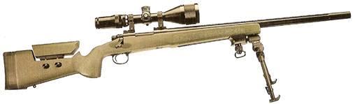 Carabine custom 300m Asi_7011