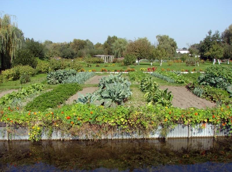ART DU JARDIN jardins d'exception - fleurs d'exception - Page 5 _1_a0172