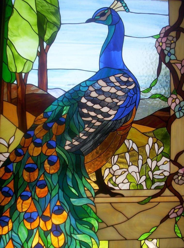 LE PAON: l'oiseau aux cent yeux  - Page 6 _1_a1124
