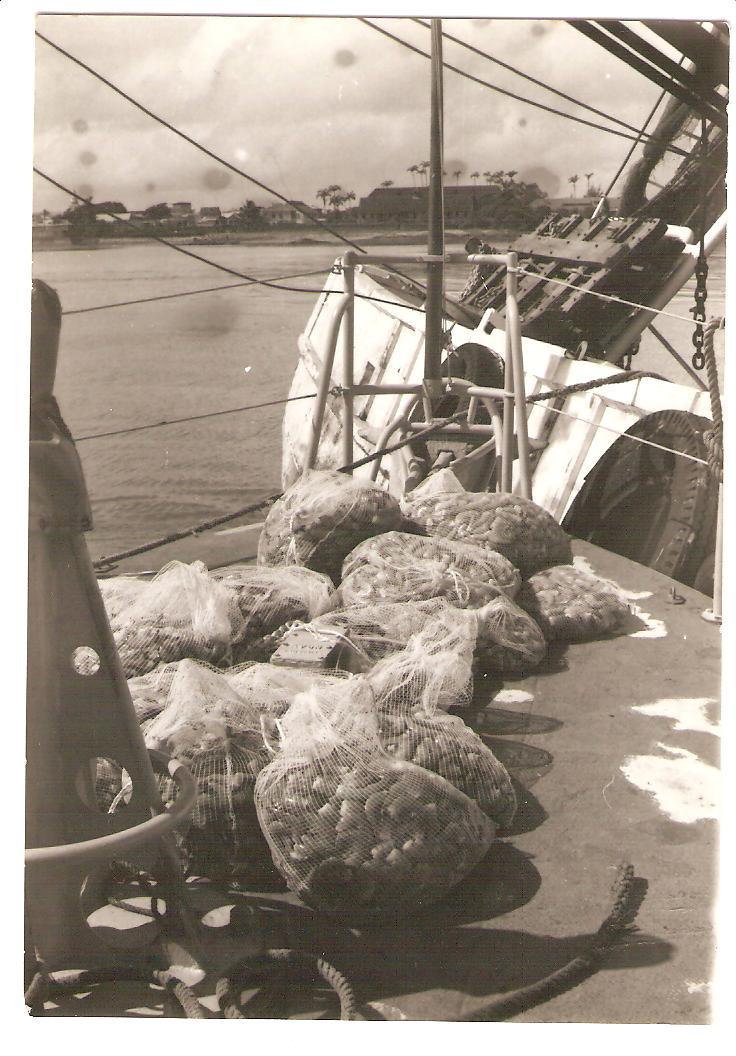 [ Divers Gendarmerie Maritime ] 1977 - Création de la brigade de gendarmerie maritime à Cayenne. P_780_10