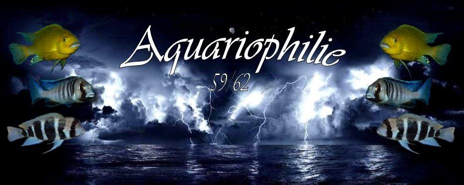 aquariophilie 59/62
