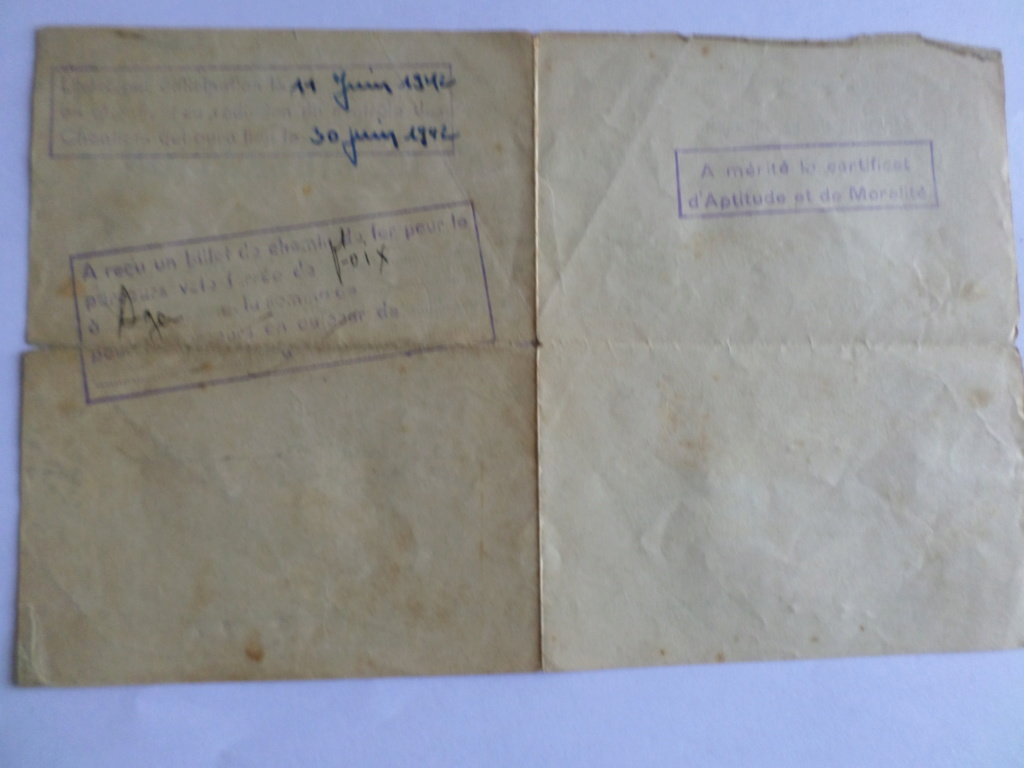estimation certificat CJF Sam_1221