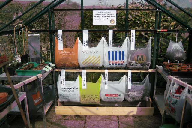 Using Eco Friendly Shopping Bags to transplant your plants into 20115710