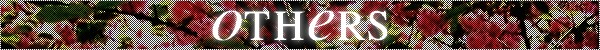 La Guerre des Clans - Forum RPG Printe10