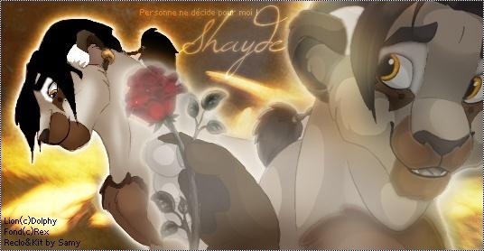 Quelle chanson écoute-tu là tout de suite ? Shayde11