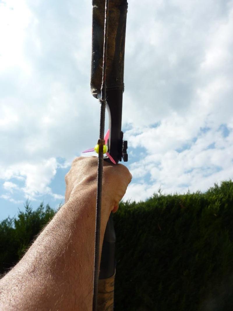 Repose flèche sur arc trad. P1010420