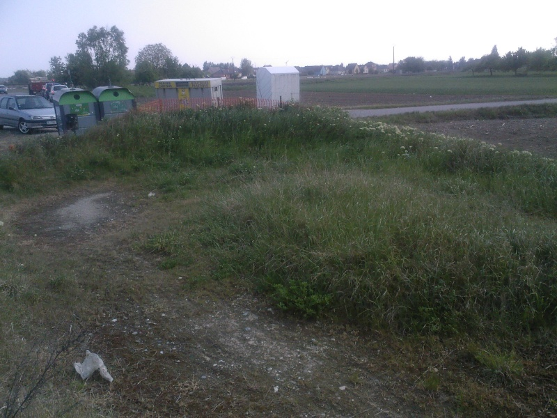 Petit ovale abandonné près de kilstett Sp_a0010