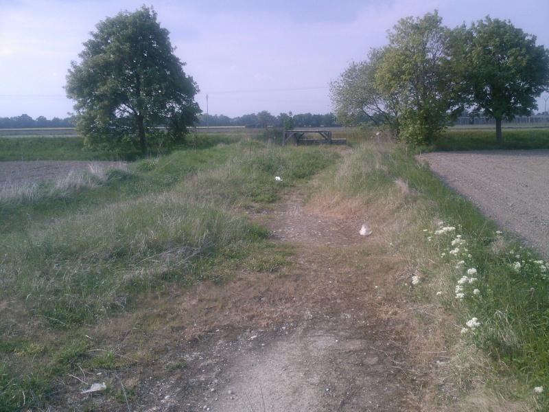 Petit ovale abandonné près de kilstett Sp_a0011