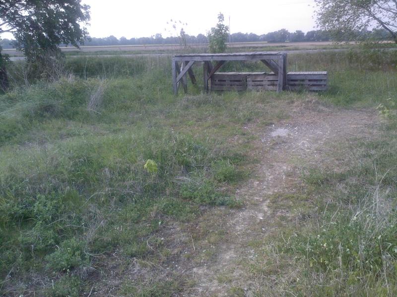 Petit ovale abandonné près de kilstett Sp_a0012