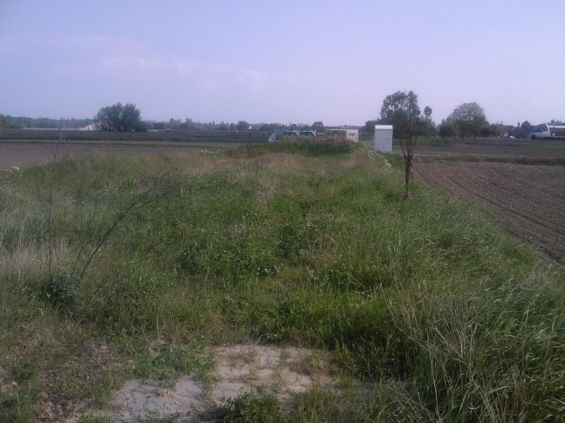 Petit ovale abandonné près de kilstett Sp_a0015