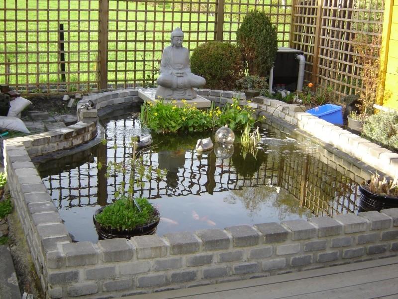 contruire un bassin  jardin Dsc06512