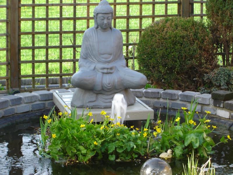 contruire un bassin  jardin Dsc06513