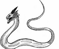lista de animais mitológicos Basili10