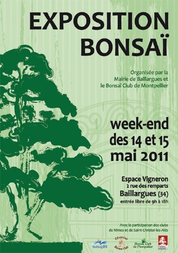 baillargues 14 et 15 mai expo bonsai 11051410