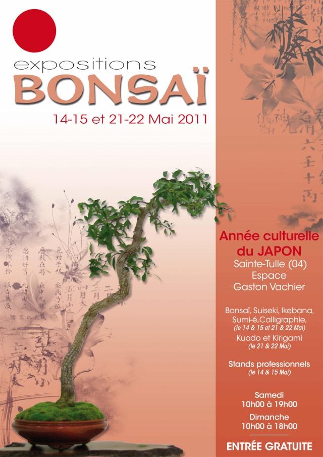 Sainte Tulle (04) expo bonsai 11051411