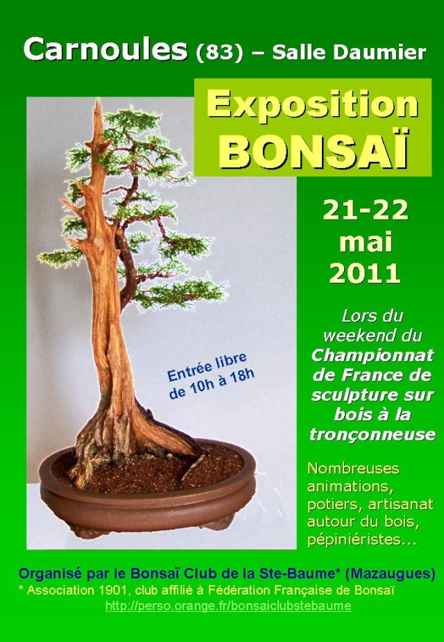 Carnoules (83) 21 et 22 mai expo bonsai 11052110