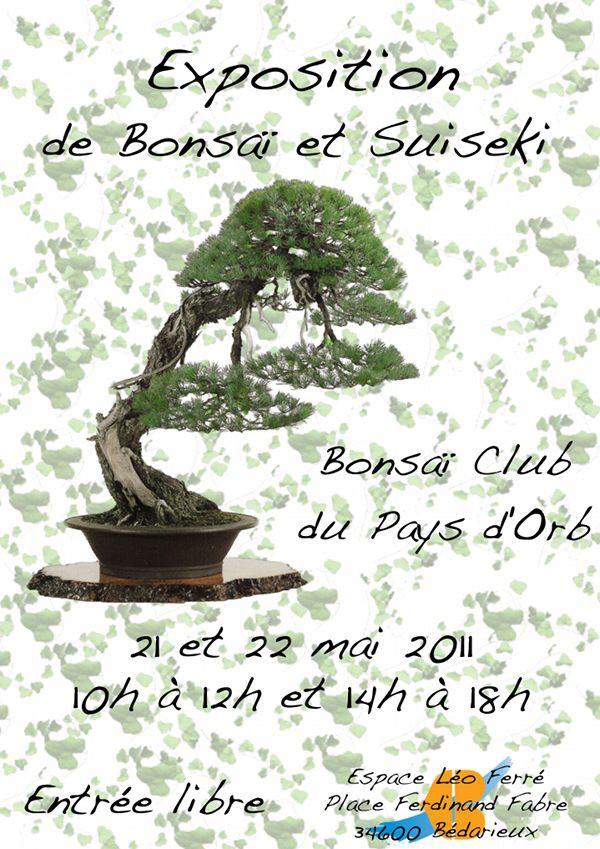 Bedarieux(34) 21 et 22 mai expo bonsai 11052111