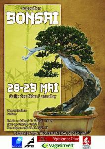 LANVALLAY  28 et 29 mai 2011 expo bonsai 11052810