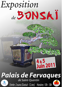 Saint Quentin 04 et 05 juin expo bonsai 11060410