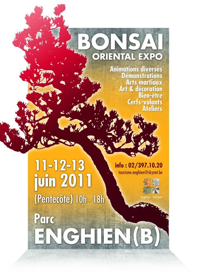 enghien (belgique) 11 juin 2011 expo bonsai 11061110